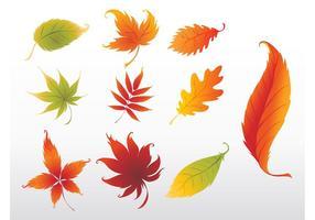 Girando Leaves Graphics