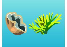 Sea Designs