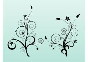Star Flowers Vector