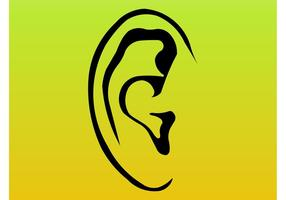 Esboços de orelha