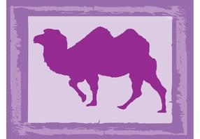 Twee Humped Camel