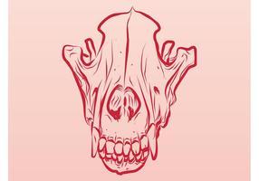 Dead Animal Skull