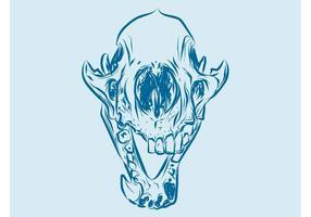 Gráficos animales del cráneo