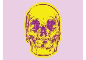 Crânio colorido
