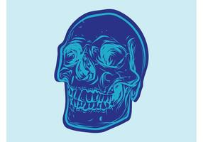 Vector de dessin de crâne