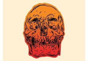 Crâne dégradé