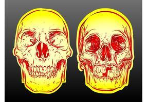 Skull-vectors