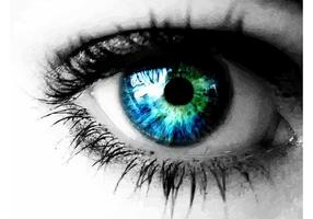 Vackert öga
