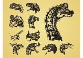 Dinosaurier-Köpfe