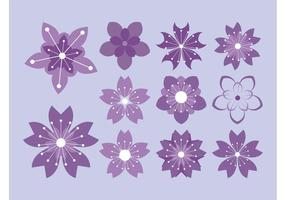 Flower Blossoms Vector