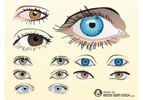 Olhos Vector