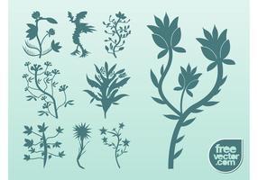 Plantes vecteur silhouette