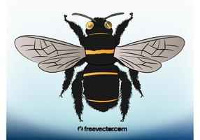 Bee Illustration
