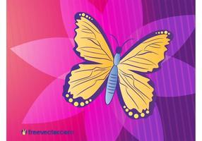 Butterfly-vector-illustration