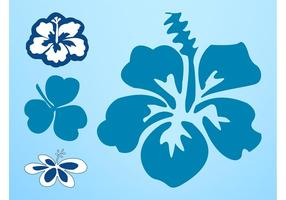 Hawaii Flowers Vector