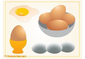 Egg Vectors