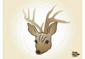 Deer-vector