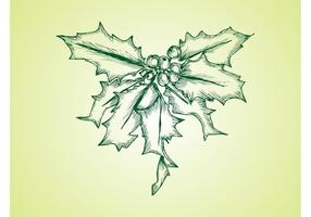 Vector Mistletoe
