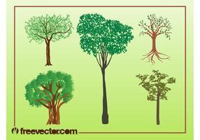 Vector Trees Illustrations