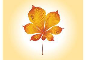 Graphiques vectoriels feuilles d'automne