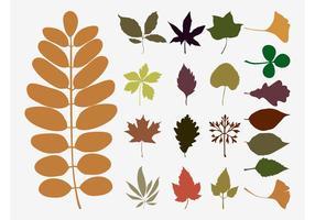 Hojas de otoño Vectores