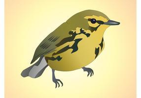 Bird-vector