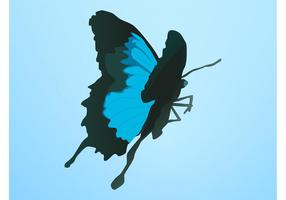Vecteur papillon bleu