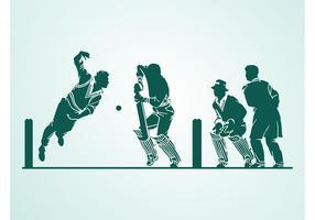 Cricket Vector