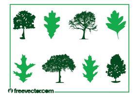 Träd och löv