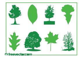 Blätter und Bäume