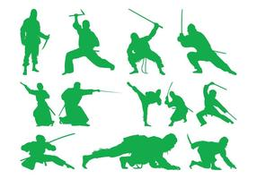 Lutando Ninjas