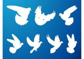 Conjunto de palomas voladoras