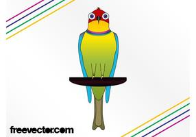 Färgglada exotiska fågeln