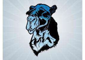 Cabeza azul del camello
