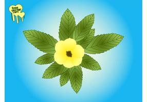 Flower And Leaves Graphics