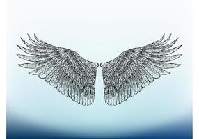Image des ailes d'oiseaux
