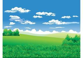 Contexte du paysage