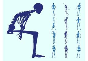 Human Skeletons Silhouettes