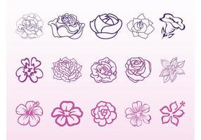 Conjunto de gráficos flores de flores