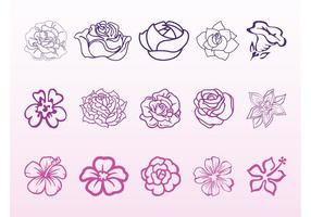 Blomma Blomningar Grafik Set