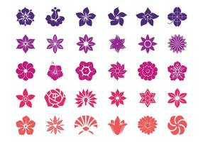 Flor de flores de gráficos