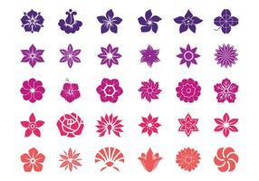 Blumenblüten Grafiken