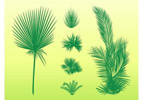 Palm Blätter Set