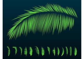 Palm Leaves Silhouettes
