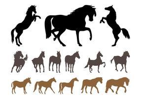 Conjunto de silueta de caballos