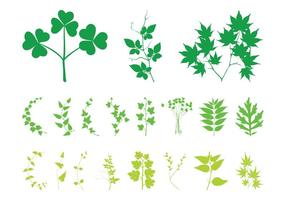 Plant bladeren en takken