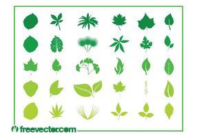 Leaves Graphics Set
