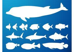 Siluetas de animales marinos