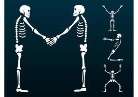 Felices esqueletos Gráficos