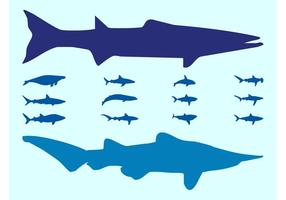 Sea Animals Silhouettes Vectors
